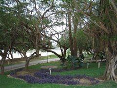 Monteria Park 029