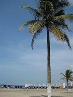 Cartagena - Boca Grande 25