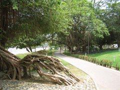 Monteria Park 005