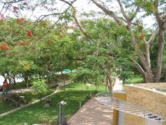 Monteria Park 022