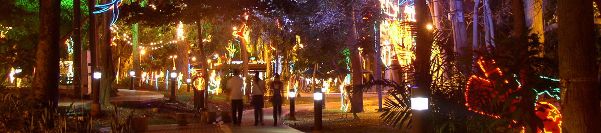 la avenida Premera in Monteria with the christmas lights of 2010