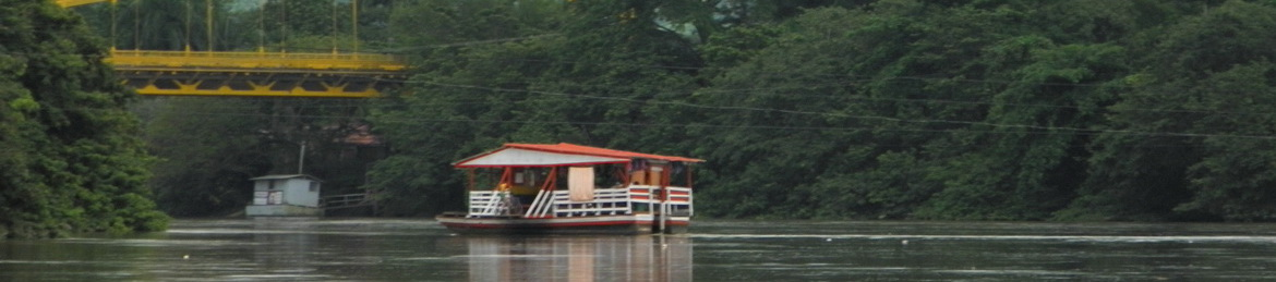 a planton on the river Sinu in Monteria Colombia
