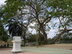 Monteria Park 044